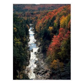 Herbstlaub in Queechee Schlucht, Queechee, Postkarte