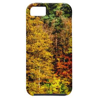 Herbstlicht iPhone 5 Case