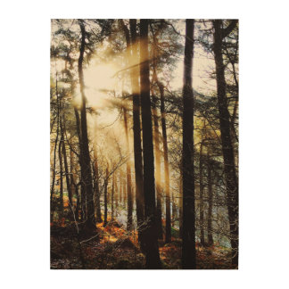 Herbstwaldsonnenaufgang, Landschaft Holzdruck