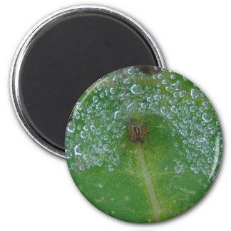 Herein angegangen runder magnet 5,1 cm