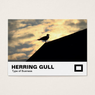 Hering-Möven-Sonnenuntergang Visitenkarte