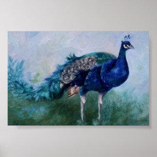 Herr Peacock Poster