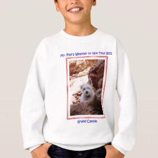 Herr Pish Explores der Grand- CanyonT - Shirt