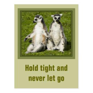 Herr u. Frau Lemur - halten Sie fest und lassen Postkarte