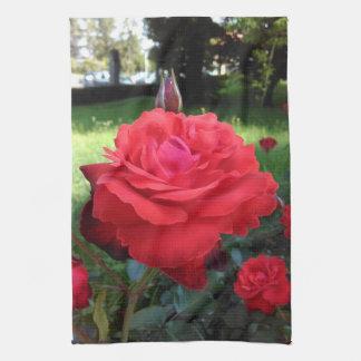 Herrliche Rote Rosen Handtuch