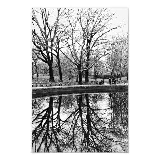 Herrliche Winter-Landschaft im Central Park Fotodrucke