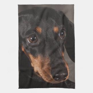 Herrliches Dackelporträt Handtuch