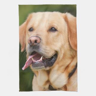 Herrliches goldenes Labrador Geschirrtuch