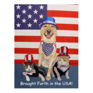 Hervorgebracht in den USA! Postkarte
