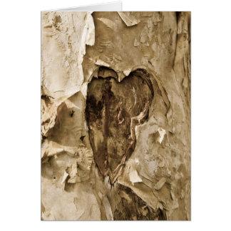 Herz auf Baumrinde Karte