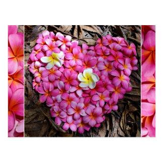 Herz-Hawaii Florida rosa Plumeria-Blumen Postkarte