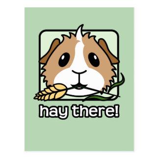 Heu dort! (Meerschweinchen) Postkarte