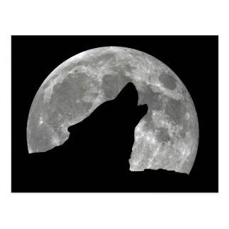 heulender Wolf Postkarte