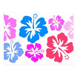 Hibiscus Cartes Postales