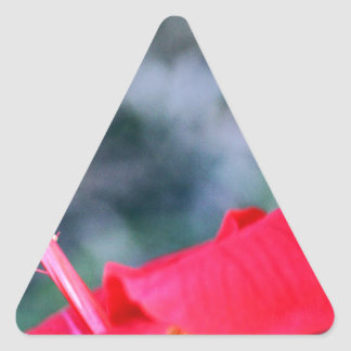 Hibiskus 4 dreieckige aufkleber