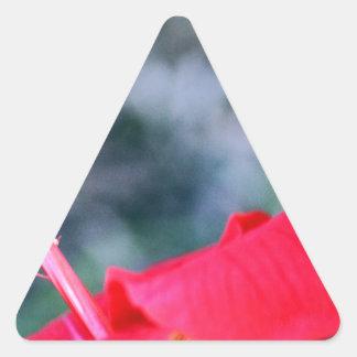 Hibiskus 4 Dreiecks-Aufkleber