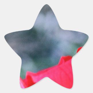 Hibiskus 4  Stern-Aufkleber