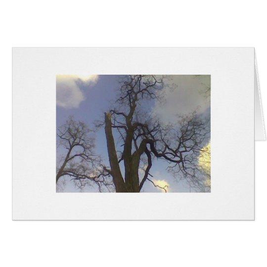 Himmel-Baum-Reihe Grußkarte