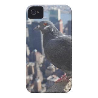 Himmel Vogel-New York City Manhattan USA städtisch iPhone 4 Hülle