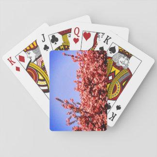 Himmel von unterhalb und Rosa-Blätter Spielkarten