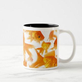 Hintergrund, der eine große Gruppe des Goldfischs  Teetassen