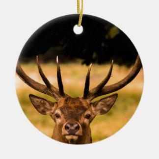 Hirsch von Richmond-Park Keramik Ornament
