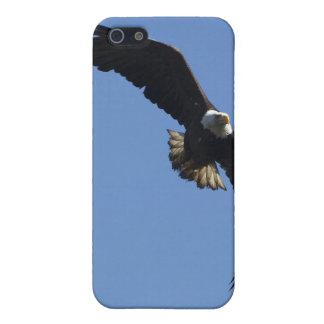 Hochfliegende kahler Adler-Natur-Szene iPhone iPhone 5 Cover