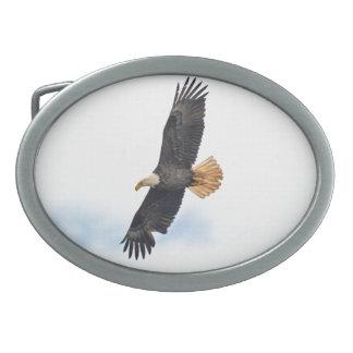 Hochfliegende kahler Adler Wildife Foto-Kunst Ovale Gürtelschnallen