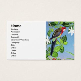 hochrotes rosella visitenkarte
