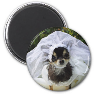 Hochzeits-Chihuahua-Braut Runder Magnet 5,7 Cm