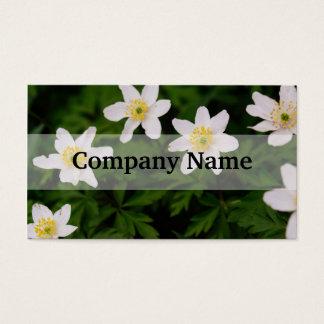 Hölzerne Anemonen-weiße Blumen, BlumenFoto Visitenkarte