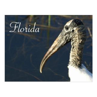 Hölzerner Storch Floridas Postkarte