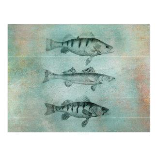 Hölzerner strukturierter Blick-Fisch-Entwurf Postkarte