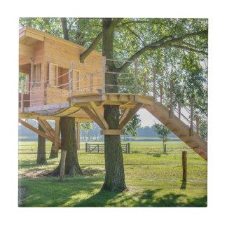 Hölzernes Baumhaus in der Eiche mit Gras Keramikfliese