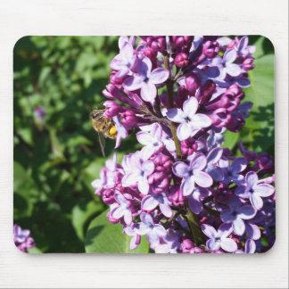 Honig-Biene auf Frühlings-Fliedern Mousepad