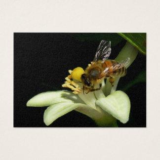 Honig-Biene auf Zitronen-Blüte ATC-Karte Visitenkarte