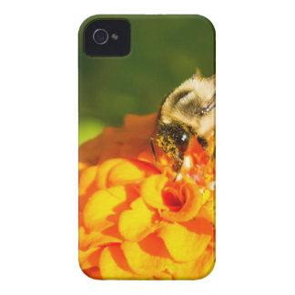 Honig-Bienen-orange Gelb-Blume mit iPhone 4 Case-Mate Hülle