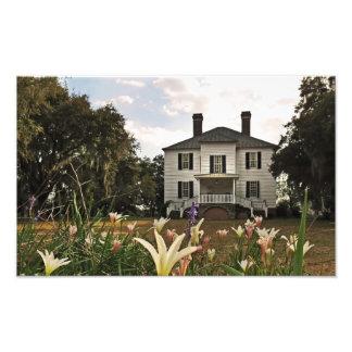 Hopsewee Plantage Georgetown County Fotodruck