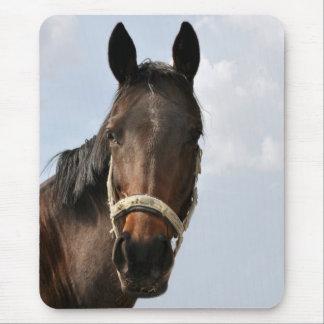 Horse Mausepad Mauspad