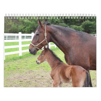 Horses Kalender
