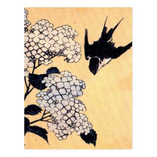 Hortensia japonais vintage cartes postales