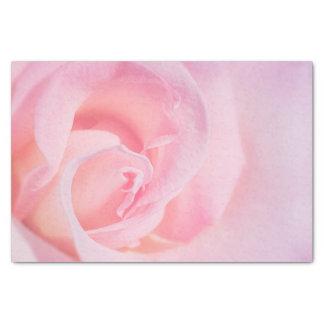Hübsch im Rosa Seidenpapier