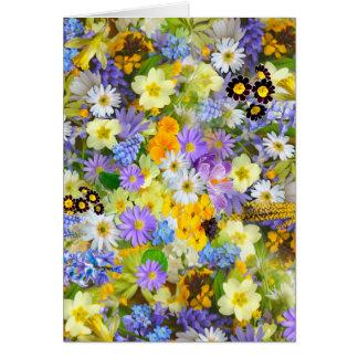 Hübsche Frühlings-Blumen-üppiger bunter Karte