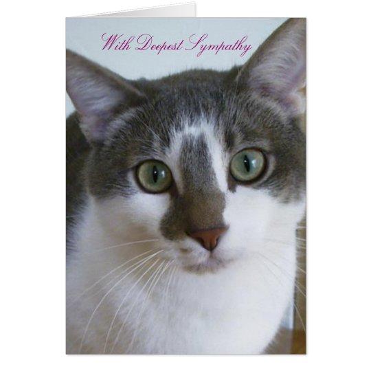 Hübsche graue und weiße Katze - Haustier-Beileid Grußkarte