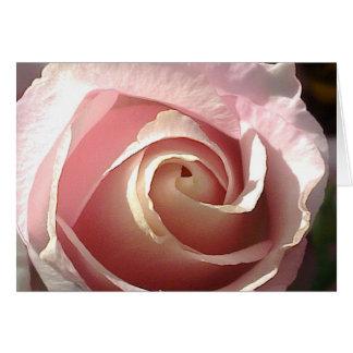 Hübsche rosa Rose Karte