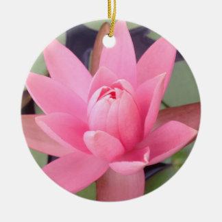 Hübsche rosa Wasser-Lilie mit Blumen Keramik Ornament