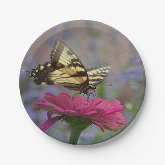Hübscher Frack-Schmetterling Pappteller