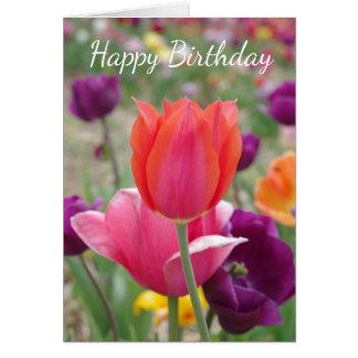 Hübscher Frühlings-Tulpe-Geburtstag Karte