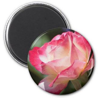 Hübscher Rosen-Kühlschrankmagnet Runder Magnet 5,1 Cm