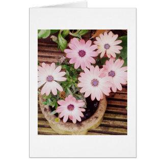 Hübscher Topf rosa Blumen, leer Karte